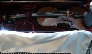 fiol i låda