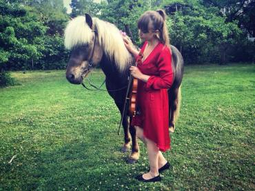 Bröllopshäst